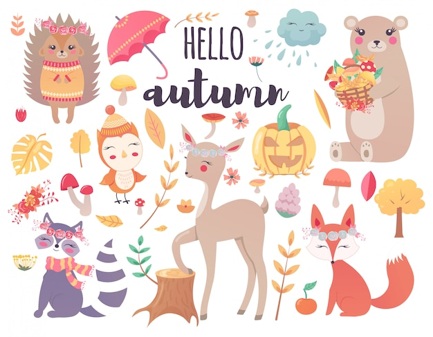 Lindos animales de bosque otoñal y elementos de diseño de bosque floral de otoño