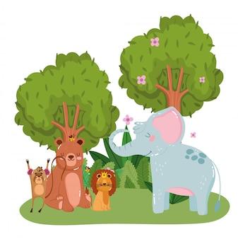 Lindos animales en el bosque