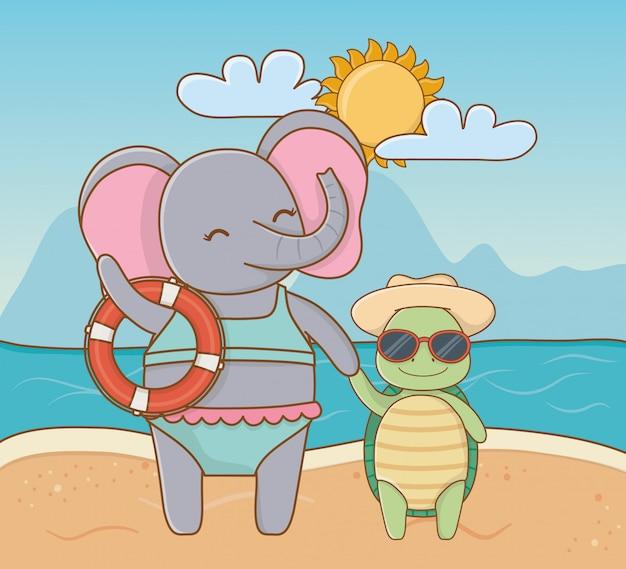 Lindos animales disfrutando de las vacaciones de verano.