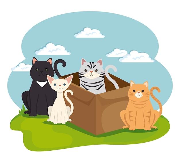 Lindos gatos mascotas en caracteres de paisaje