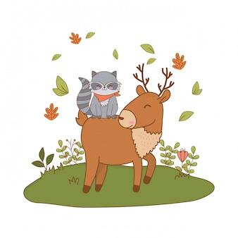 Lindos renos y mapaches en el campo arbolado personajes
