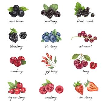 Lista de bayas frescas con nombres