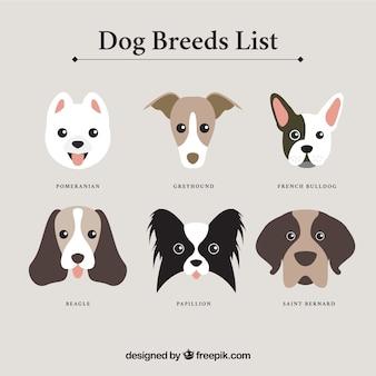 Lista de razas de perro