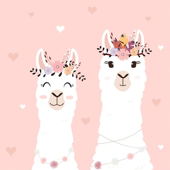 Llamas lindas para invitación de boda.