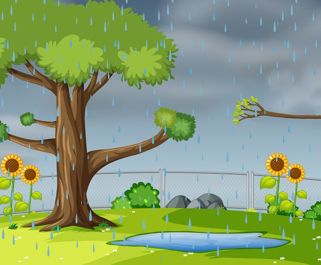 Lloviendo en el jardin