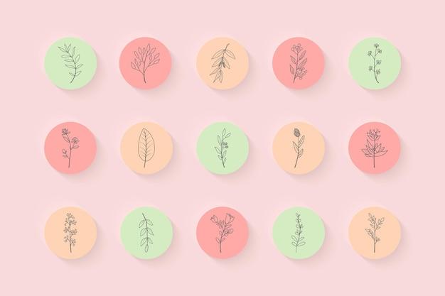 Lo más destacado de las historias de instagram con elementos florales dibujados a mano