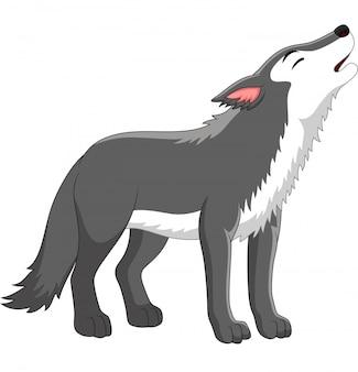 Lobo de dibujos animados aullando en blanco