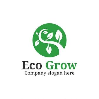 Logo de crecimiento de naturaleza