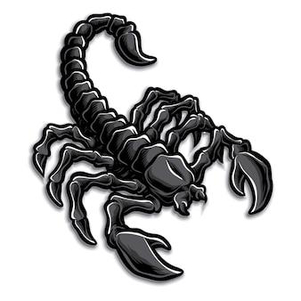 Logo de escorpion