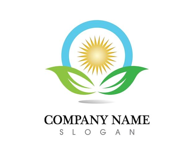 Logo de vector de hoja de arbol