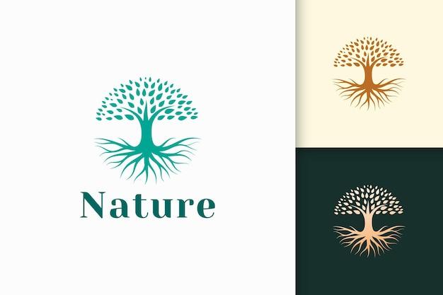 Logotipo de árbol circular con raíz en color verde y forma moderna