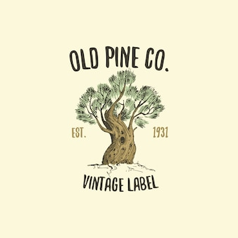 Logotipo del árbol de pino grabado o dibujado a mano, emblema de aspecto antiguo para la ecología, el camping o la marca de alimentos