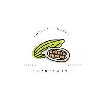 Logotipo y emblema de la plantilla de diseño de empaque - hierbas y especias - cardamomo. logotipo en estilo lineal de moda.