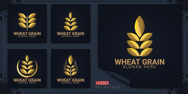 Logotipo de grano de trigo