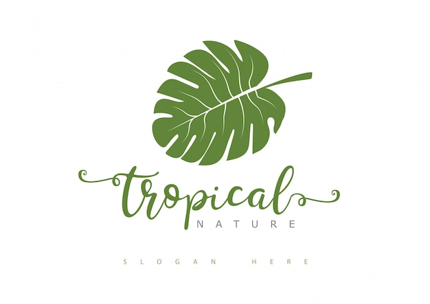 Logotipo de hoja tropical
