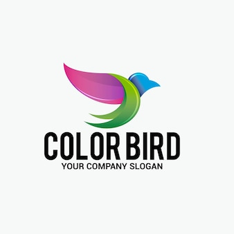 Logotipo de pájaro de color