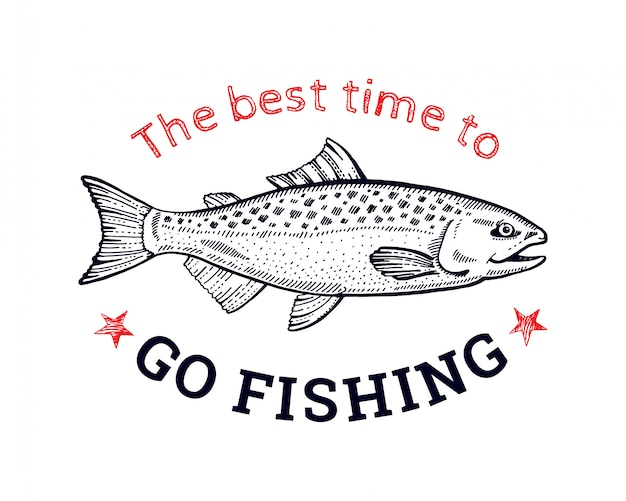 Logotipo de pez salmón para estampado de camiseta. estilo de boceto dibujado a mano. línea negra art.