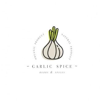 Logotipo de la plantilla de diseño de embalaje y emblema - hierba y especias - cabeza de ajo. logotipo en estilo lineal de moda.