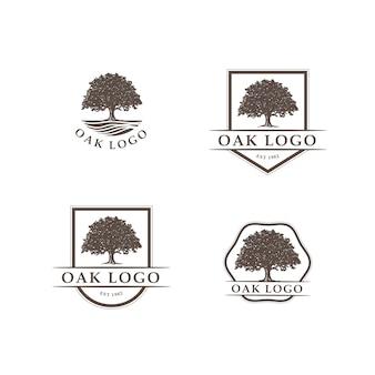 Logotipo de roble con insignias