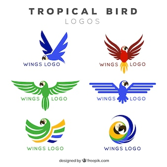 Logotipos de alas de pájaros tropicales
