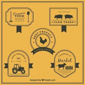 Logotipos retro para granja