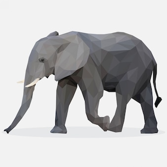 Lowpoly of elephant