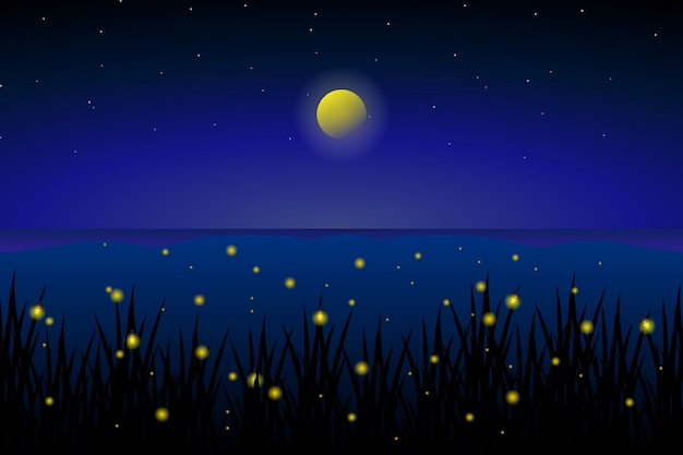 Luciérnaga en el mar con noche estrellada y paisaje de cielo colorido