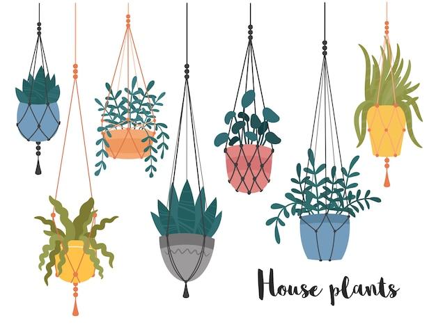 Macrame colgando plantas en macetas