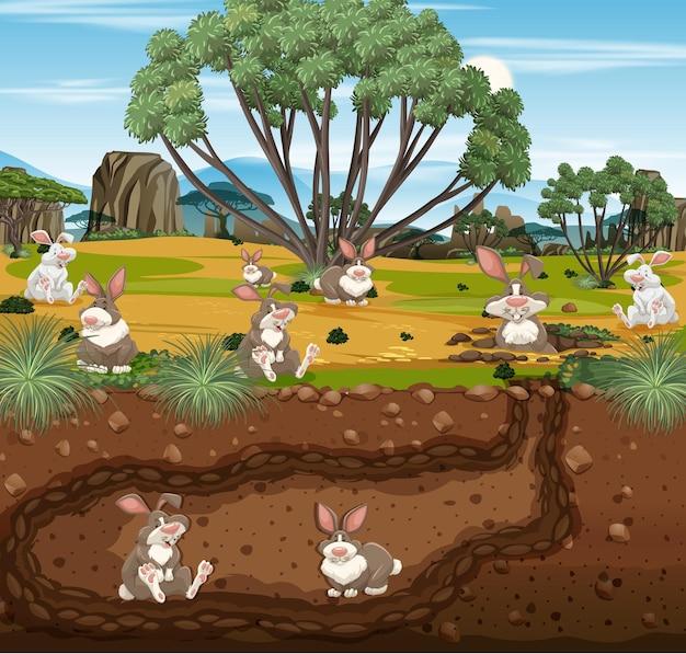Madriguera de animales subterránea con familia de conejos