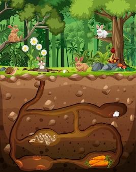Madriguera de animales subterráneos con animales en el bosque.