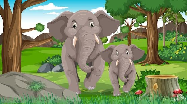 Mamá y bebé elefante en escena de bosque o selva tropical con muchos árboles