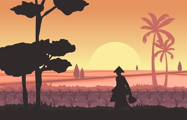 Mañana agricultor asiático en campo de arroz plantación de arroz agricultura ilustración
