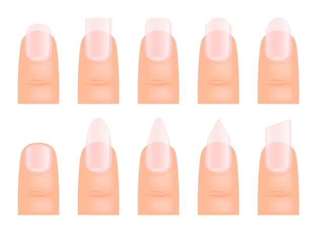Manicure las uñas. varios tipos de arte de uñas