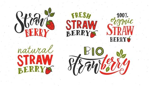 Mano bosquejó el concepto de tipografía de letras de fresa para el mercado de agricultores de alimentos orgánicos naturales