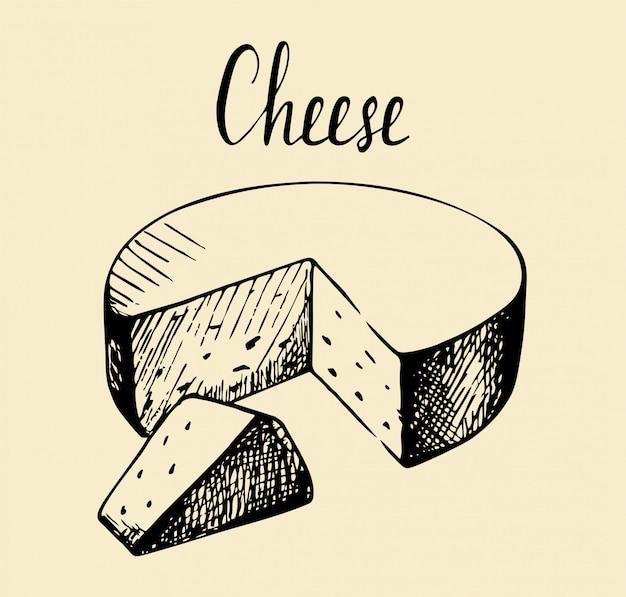 Mano dibuja boceto pieza de ilustración vintage de queso.