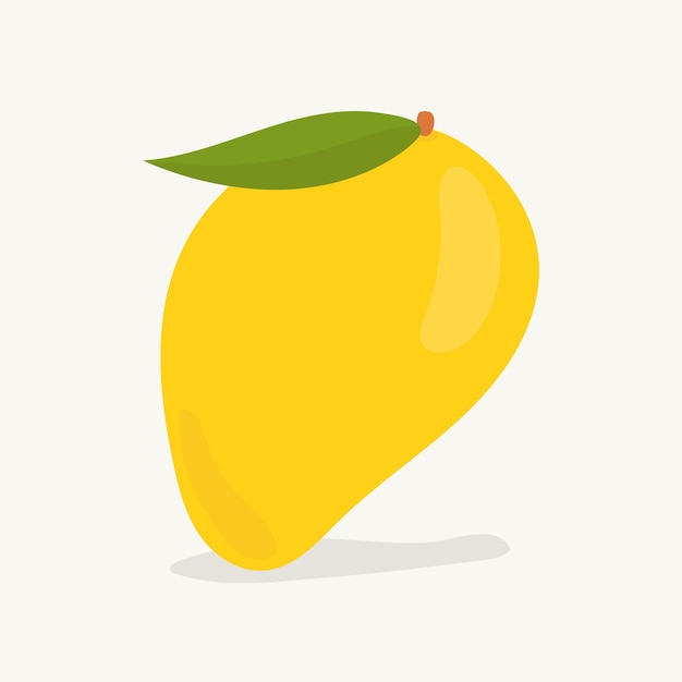 Mano dibuja la ilustración de fruta de mango