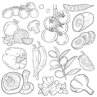 Mano dibuja la ilustración de vegetales.
