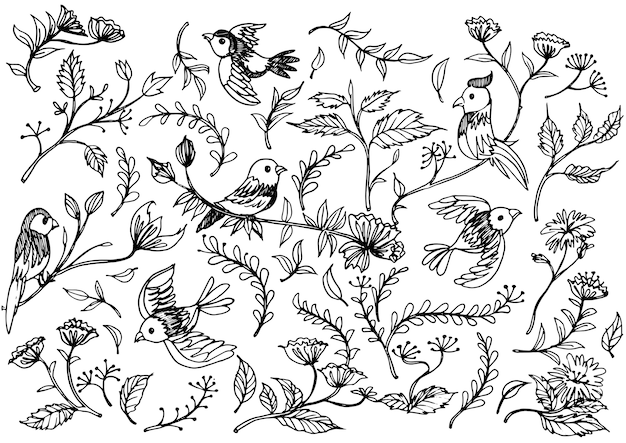 Mano dibujada adornos florales con flores y pájaros