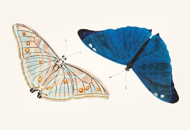 Mano dibujada de mariposa azul brillante