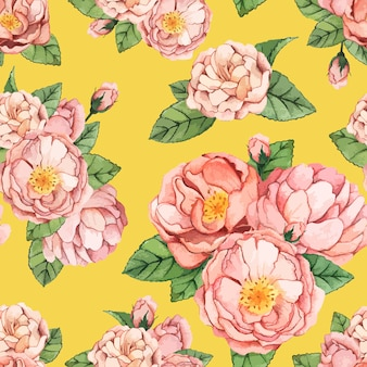 Mano dibujada peonía flor aislada