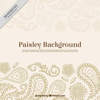 Mano dibujado paisley fondo ornamental