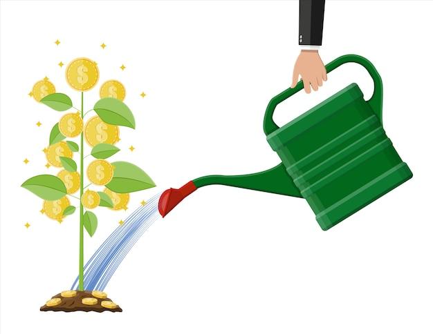 Mano de empresario regando el árbol de monedas de dinero con lata