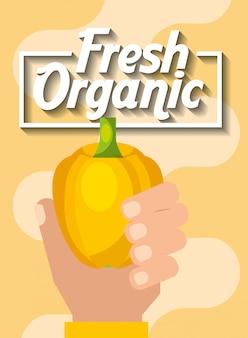 Mano que sostiene la pimienta amarilla orgánica fresca vegetal