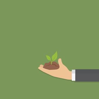 Mano sosteniendo una planta joven verde