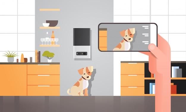 Mano usando el teléfono inteligente que controla el almacenamiento digital automático de alimentos secos para mascotas, dispensador de comida ai, concepto de alimentación inteligente para animales, aplicación móvil en línea, sala de estar moderna, interior horizontal