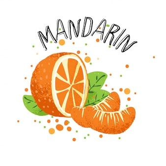 Mano de vector dibujar ilustración de mandarina naranja. rodaja de naranja mandarina, salpicaduras de jugo aisladas sobre fondo blanco.