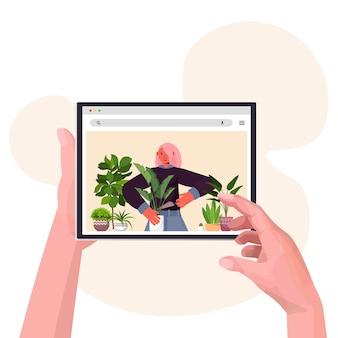 Manos con dispositivo digital mujer plantar plantas de interior en maceta en la pantalla de la tableta retrato del concepto de horticultura