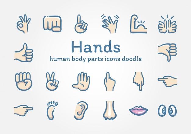 Las manos y los iconos de partes del cuerpo humano doodle