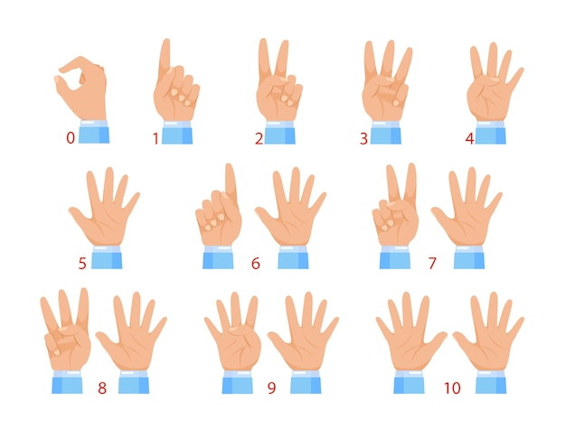 Manos y números con los dedos. gesto de mano humana y número aislado sobre fondo blanco.