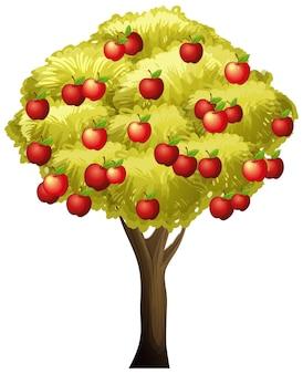 Manzano aislado sobre fondo blanco.